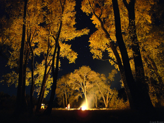 fall bonfire